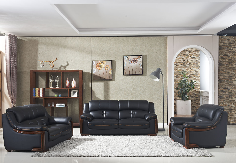 Professional Manufacture Leather Sofa Combination