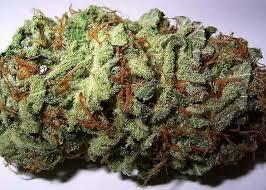 quality medical marijuana for sale