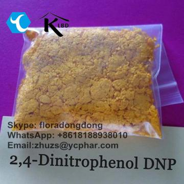 DNP 2,4-Dinitrophenol CAS: 51-28-5 for Fat Loss