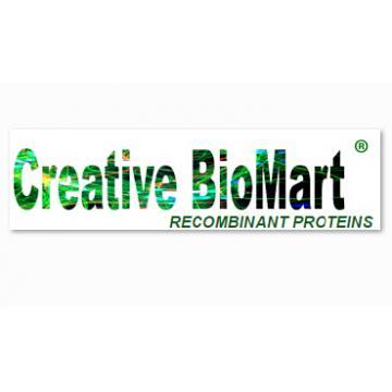 CHO-K1 GCGR Bioassay Kit