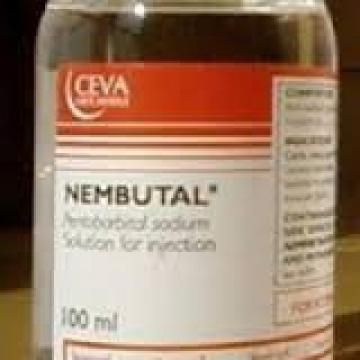 Nembutal Pentobarbital Sodium solution ( Powder ,Liquid )
