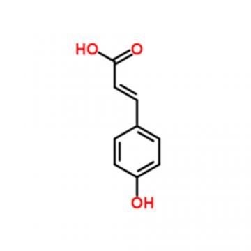 P-Hydroxycinnamic Acid